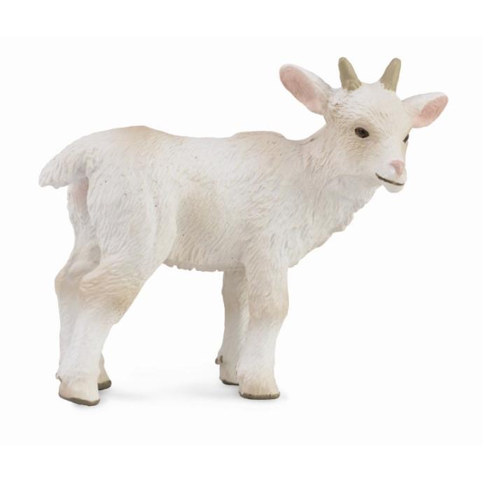 Mô hình thu nhỏ: Dê con - Goat Kid - Standing, hiệu: CollectA, mã HS 9650151[88786] -  Chất liệu an toàn cho trẻ - Hàng chính hãng
