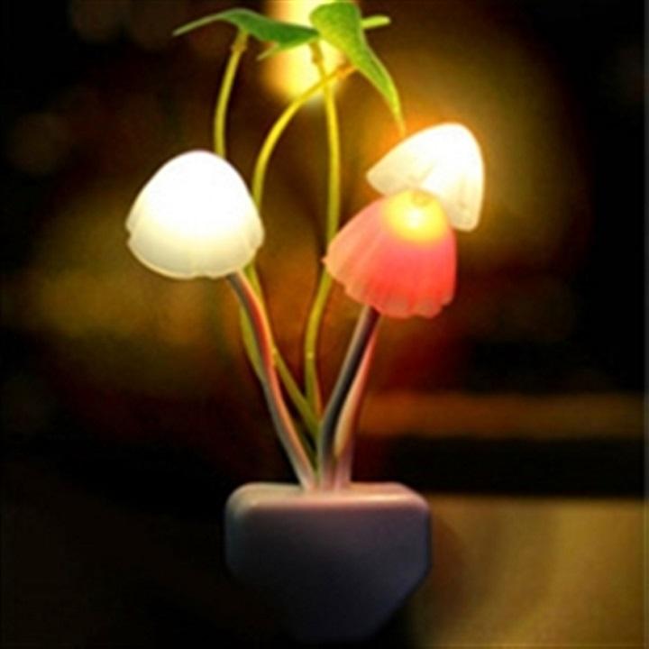 Combo 5 đèn ngủ cảm ứng GTS cao cấp hình nấm