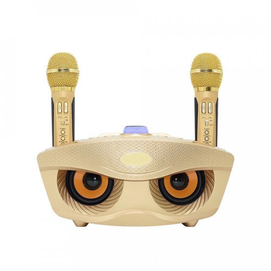 Loa Hát Karaoke Bluetooth  306 kèm 2 Mic