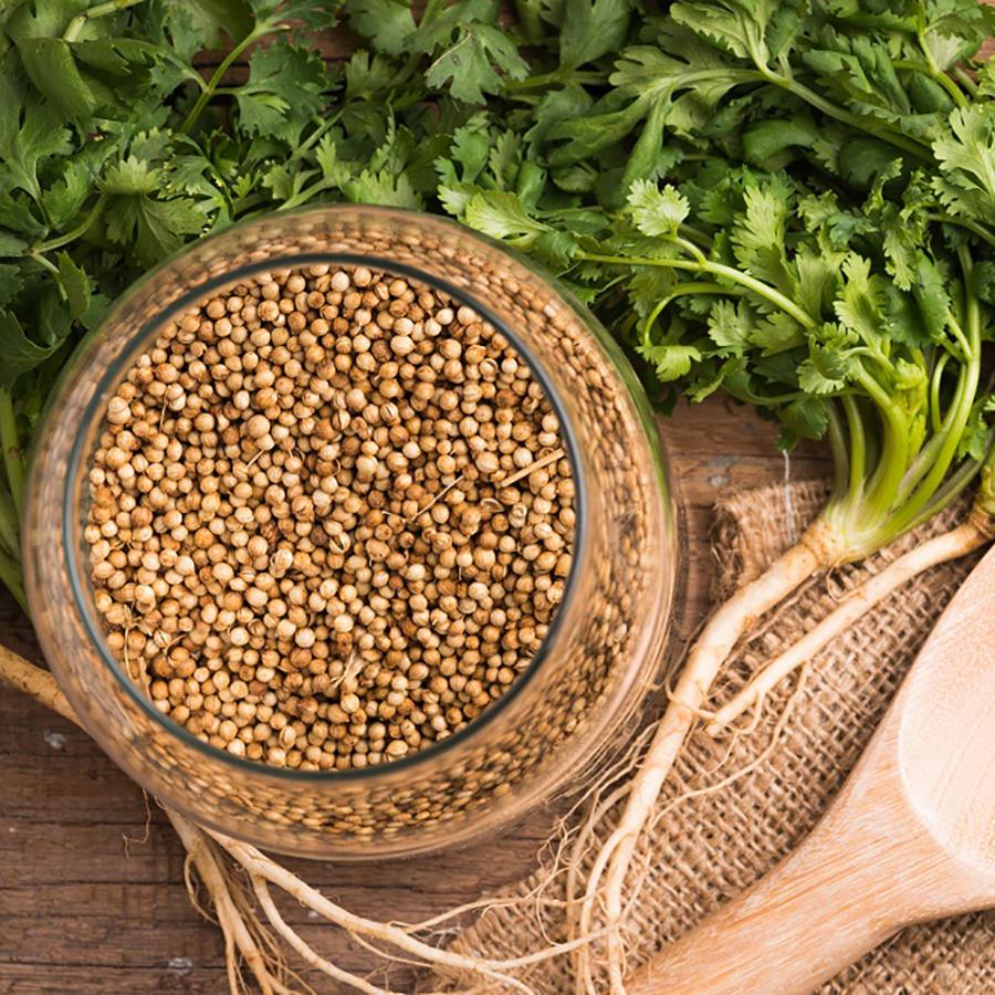 Tinh Dầu Hạt Mùi Già - Coriander Seed Essential Oil 10ml  - Hoa Thơm Cỏ Lạ