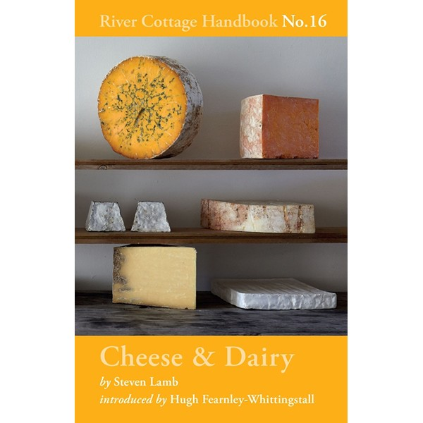 Cheese and Dairy