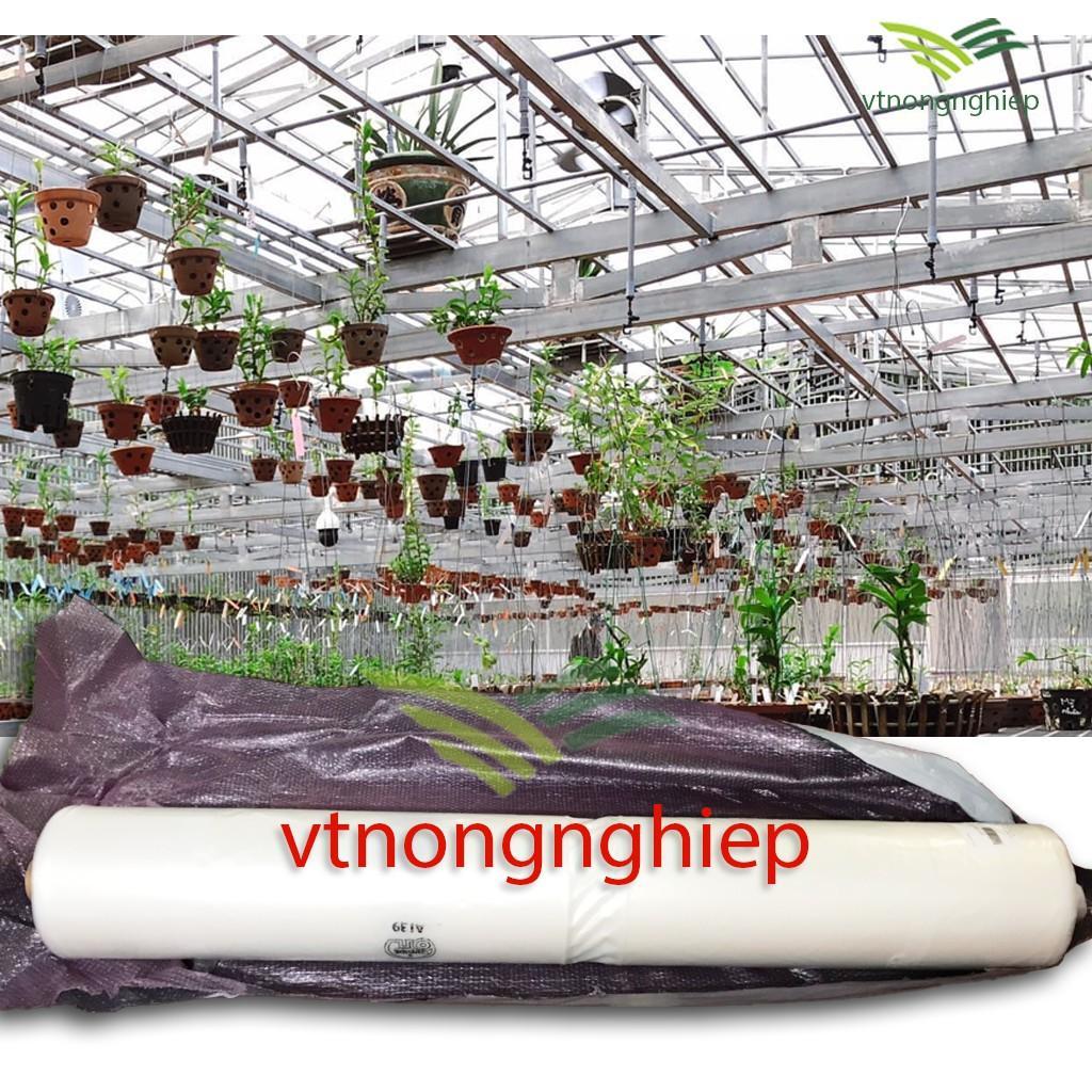 1m Màng nhà kính Ginegar-Israel, rộng 5.2m, 5 lớp film, độ bền 5-8 năm, chuyên dùng cho vườn hoa, vườn rau sạch.