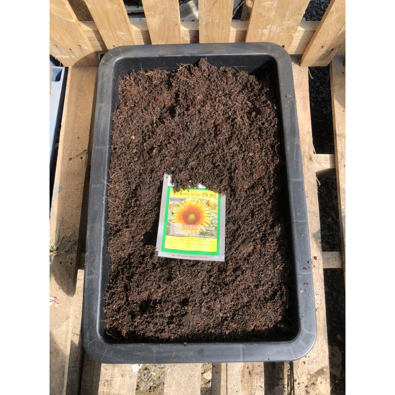 Dụng cụ trồng Hoa Hướng Dương gồm: 25dm3 đất sạch giàu dinh dưỡng, khay trồng, 5 gam hạt giống