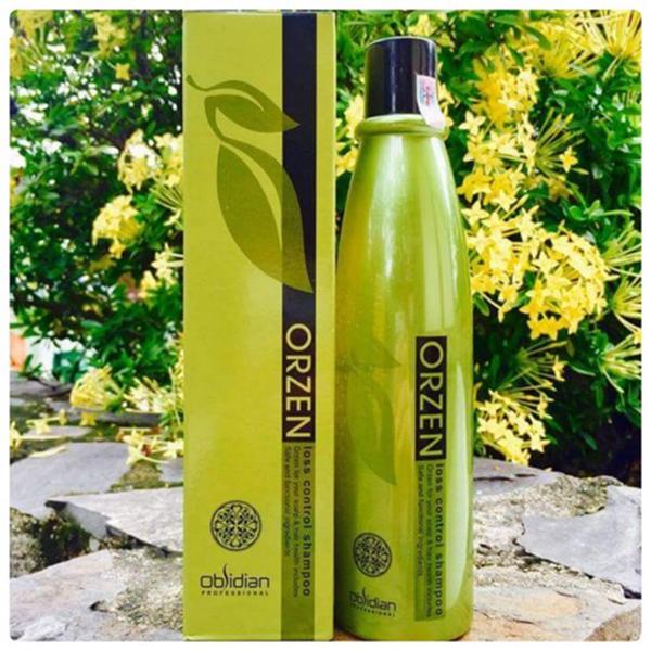 Dầu gội kích thích mọc tóc Obsidian Professional Orzen Loss Control Shampoo Hàn Quốc 320ml tặng kèm móc khoá