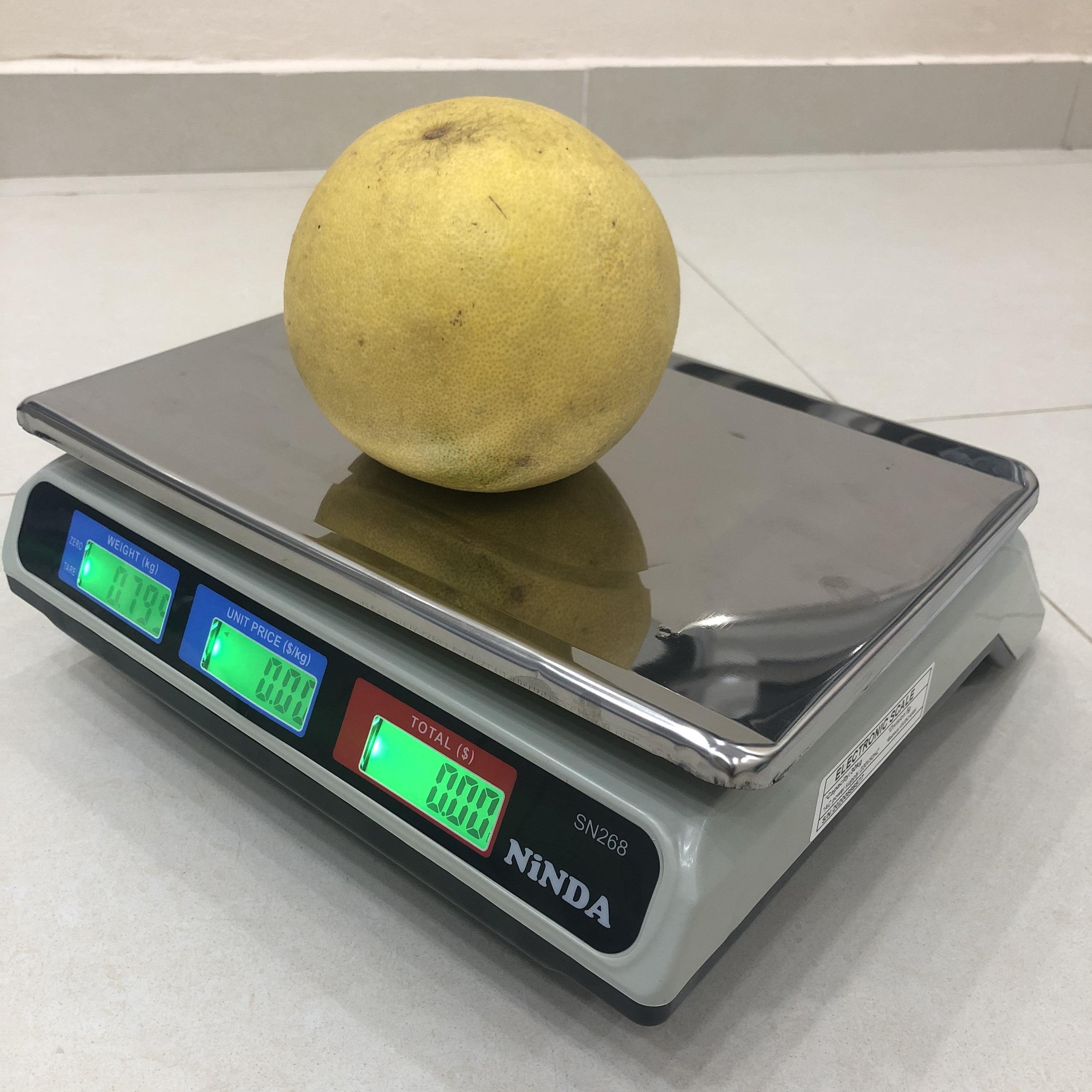 Cân điện tử 30kg Ninda, cân tính giá hoa quả thực phẩm sử dụng cho chuỗi siêu thị, cửa hàng trái cây, rau quả, thủy hải sản