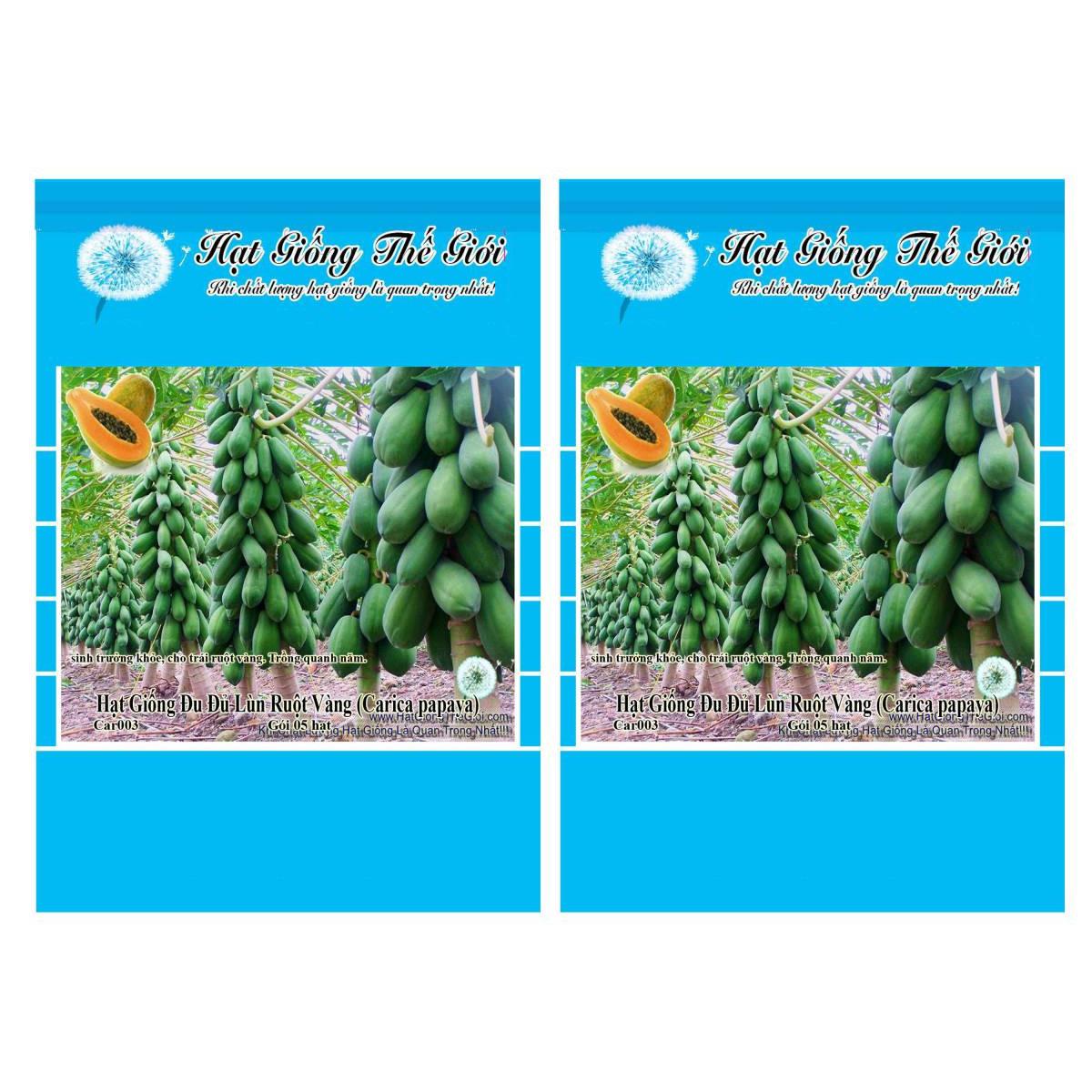 Bộ 2 Gói Hạt Giống Đu Đủ Lùn Ruột Vàng (Carica papaya) 5h