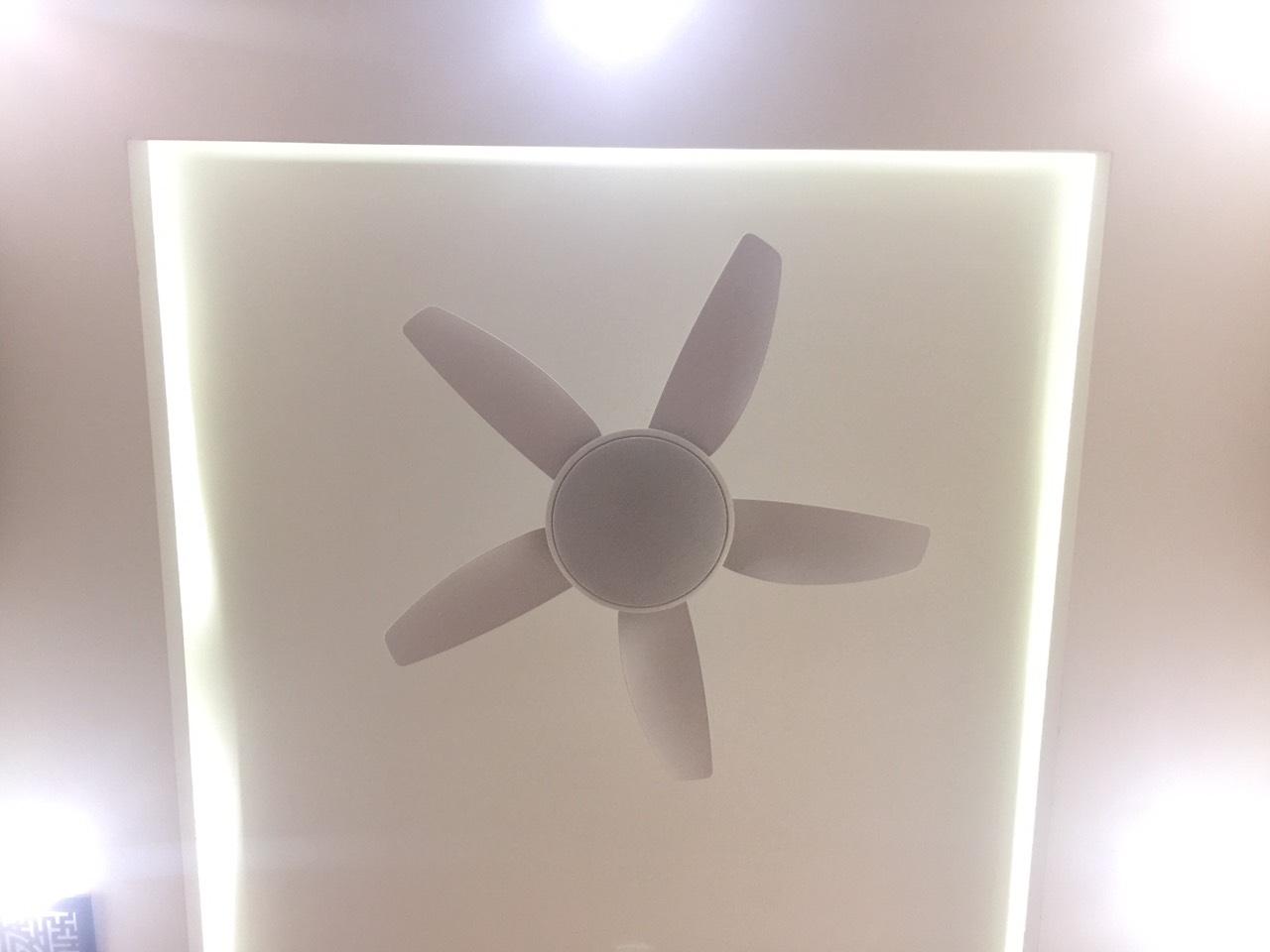 Quạt trần đèn QTK80