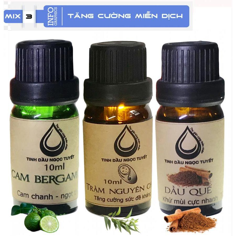 Bộ tinh dầu tạo khôn khí trong lành 10mlx3 (tràm, quế, cam begamot) Ngọc Tuyết