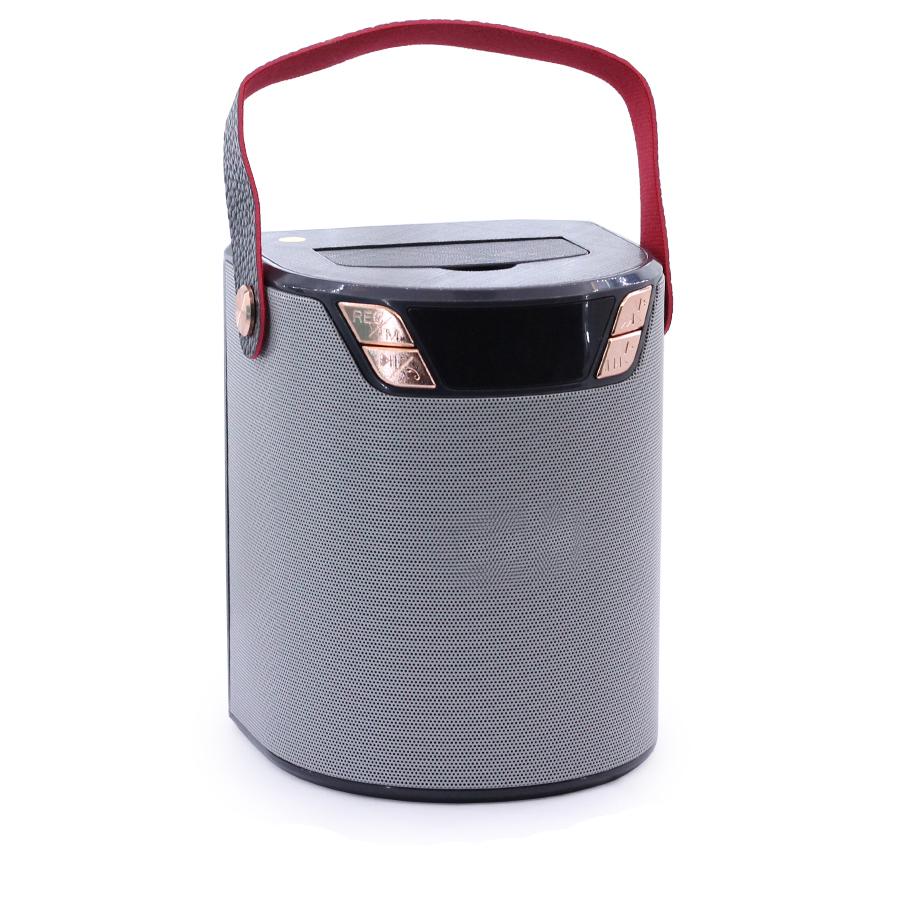 Loa Bluetooth WS-1660