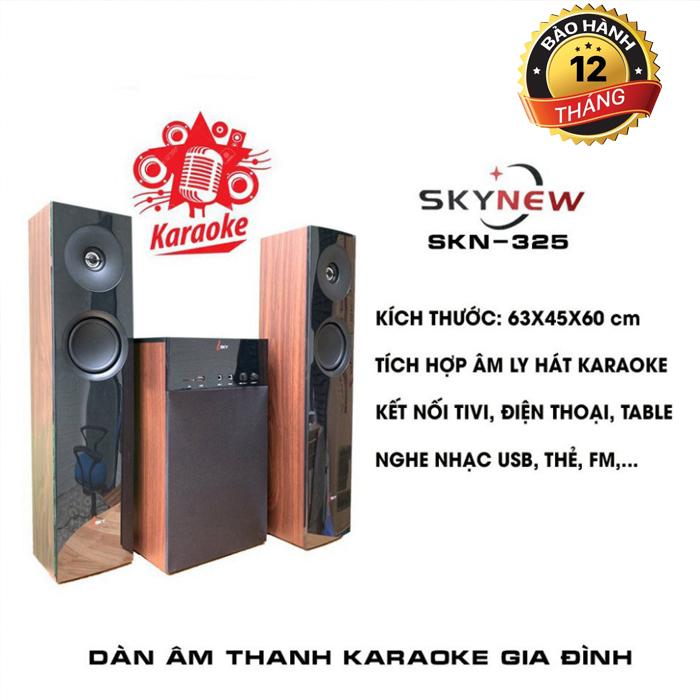 Dàn Karaoke Gia Đình SKN-325 Âm Thanh Khủng Kết Nối Tivi , Iphone, Ipad, Smartphone Hàng Chính Hãng SKYNEW