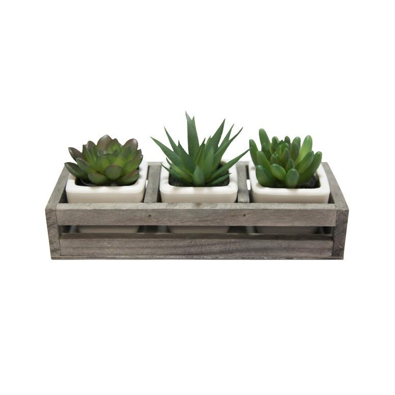 Bộ 3 cây sen đá nhân tạo mini kèm kệ gỗ, kích thước 20 x 4 x 7cm