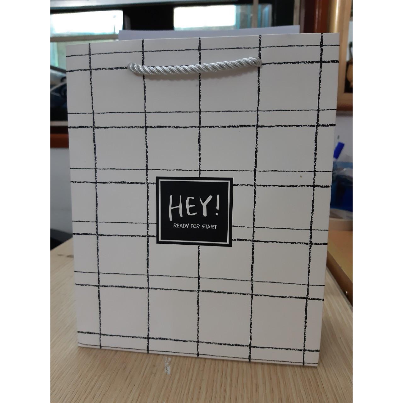 Sét 5 túi quà bằng giấy dây dù (20x10x24)