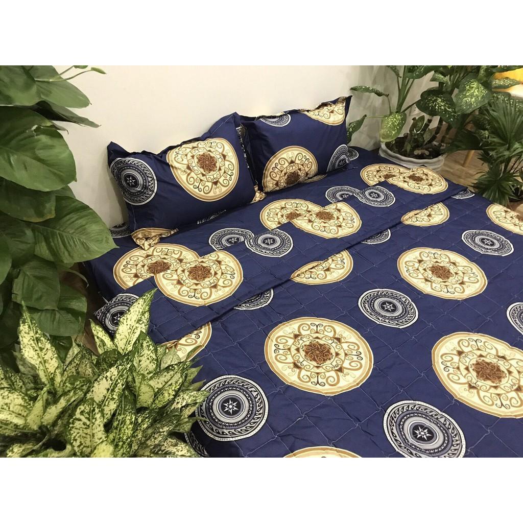 Bộ ga chun và 2 áo gối nằm Emmidecor -  mẫu đồng tiền xanh, drap cotton poly