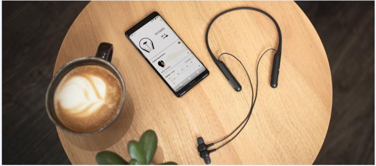 Tai nghe chống ồn không dây Sony WI-C600N