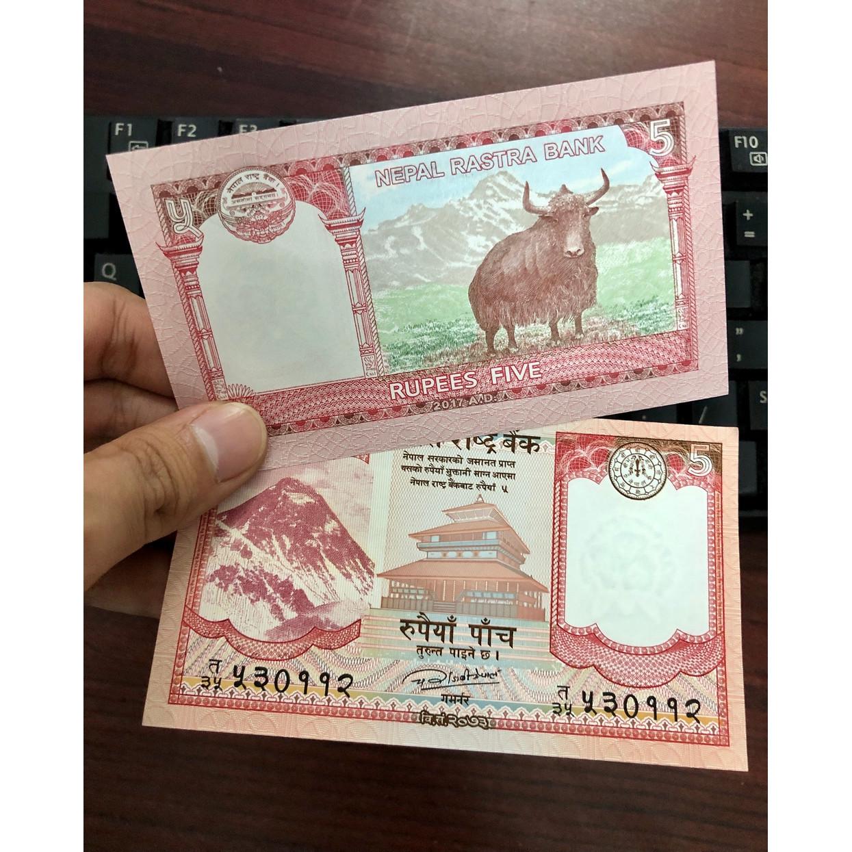 Tờ tiền hình con trâu Nepal 5 Rupees bên cạnh đỉnh Hymalaya kèm bao lì xì - The Merrick Mint