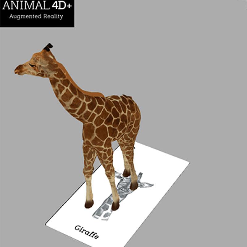 Bộ Thẻ Animal 4D+ Hình Ảnh Con Vật Sinh Động - Thúc Đẩy Trí Thông Minh, Khả Năng Sáng Tạo Cho Bé