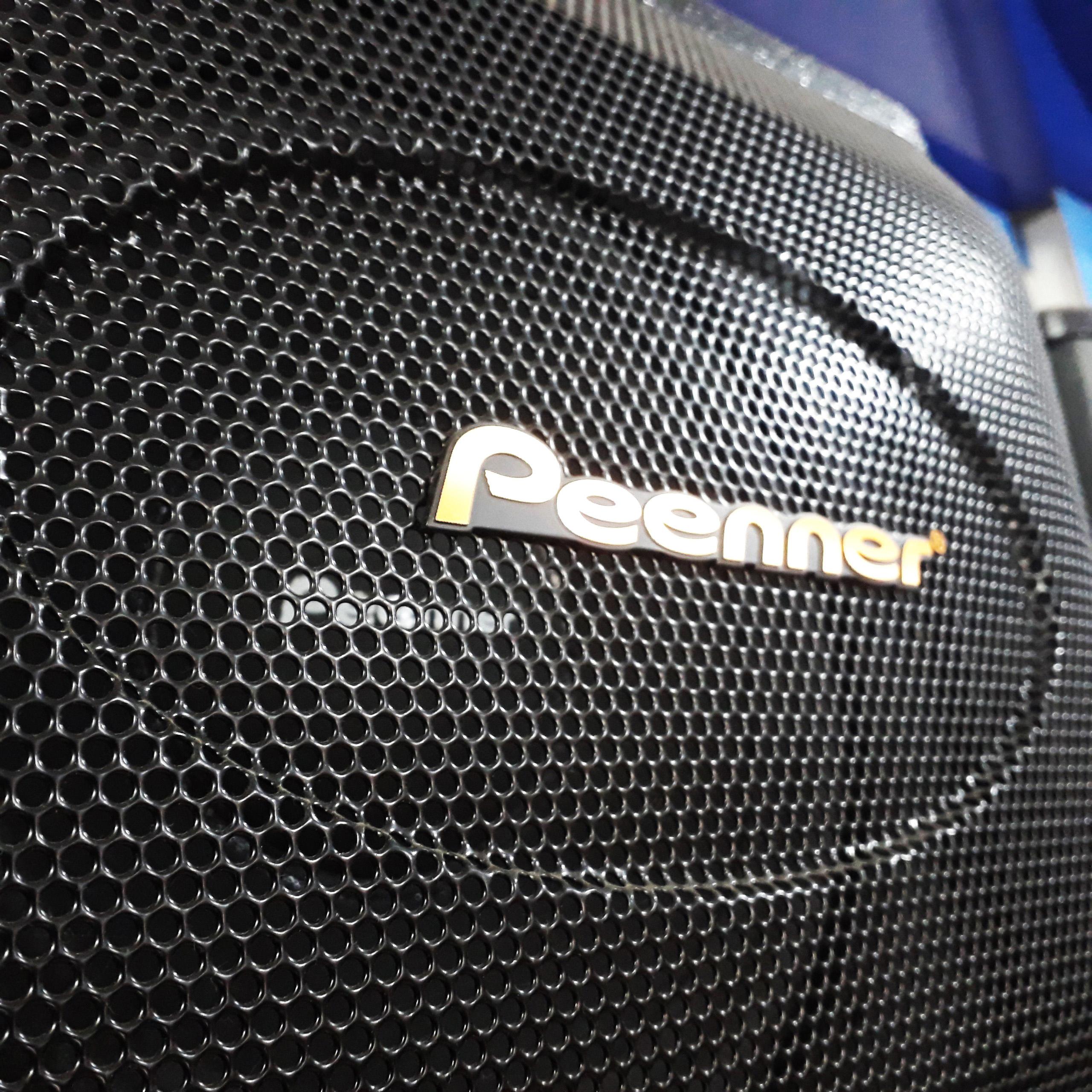 Bộ 2 Loa nằm Peenner PS-699 lưới sắt, Bass 25cm, sơn chống trầy - Hàng chính hãng