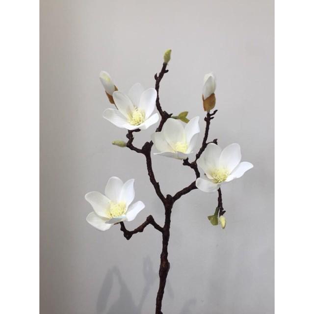 Cành Hoa Mộc Lan cao su 60cm