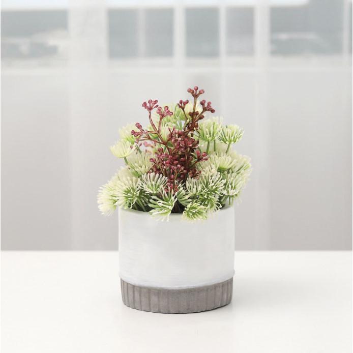 Chậu cây hoa giả tròn Home the new life hoa thạch thảo 9x8x16,5cm màu trắng