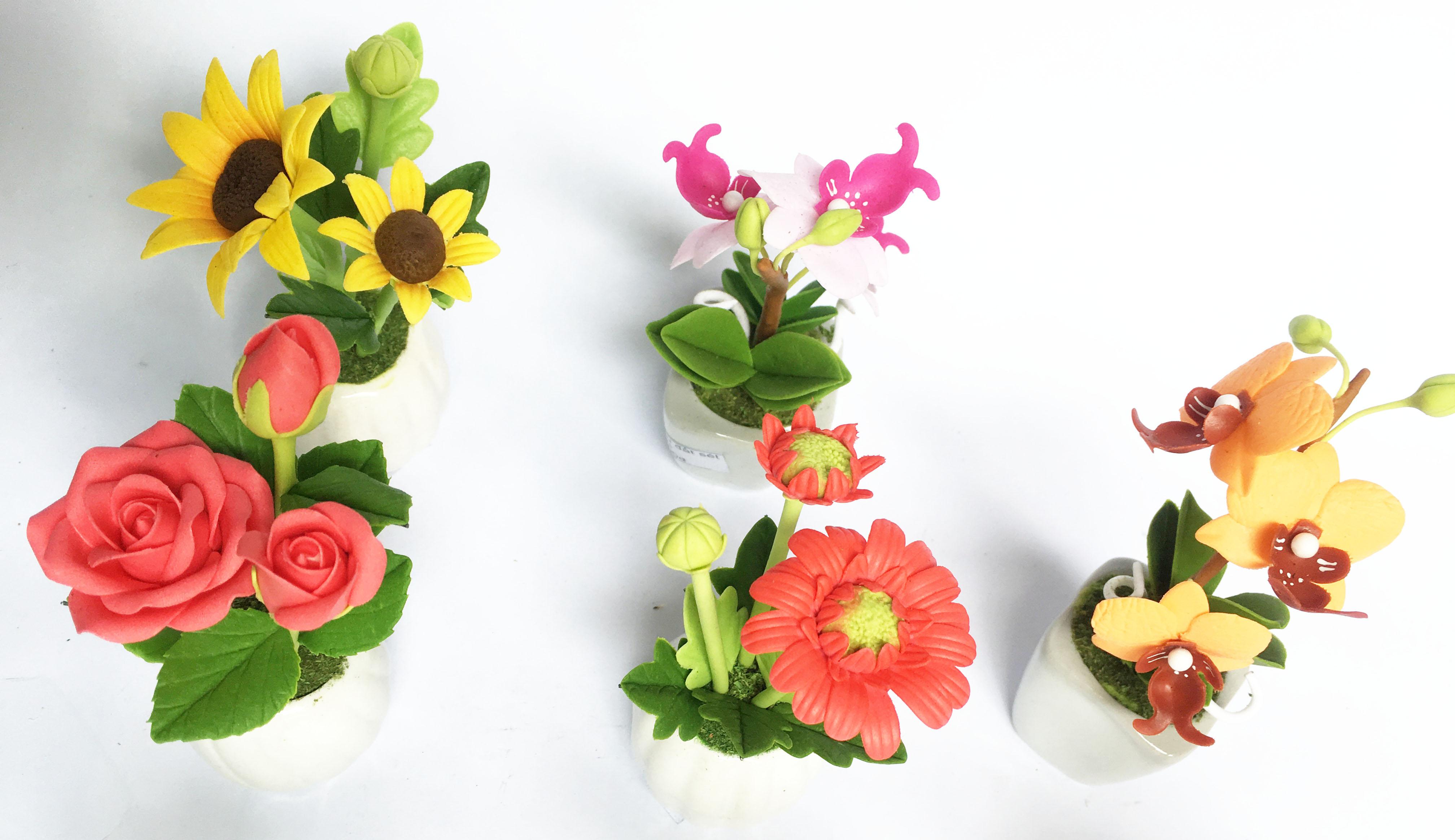 Kết quả hình ảnh cho hoa hồng đất sét