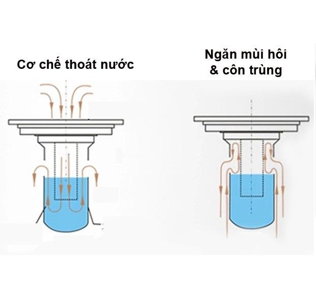 THOÁT SÀN NGĂN MÙI DAESUN- DS 515 ( 100 X 100) 600gr