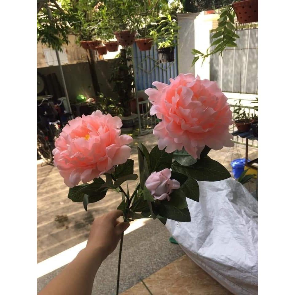 Hoa lụa cao cấp, hoa mẫu đơn giả 2 bông 1 nụ sang trọng trang trí phòng khách, tiền sảnh