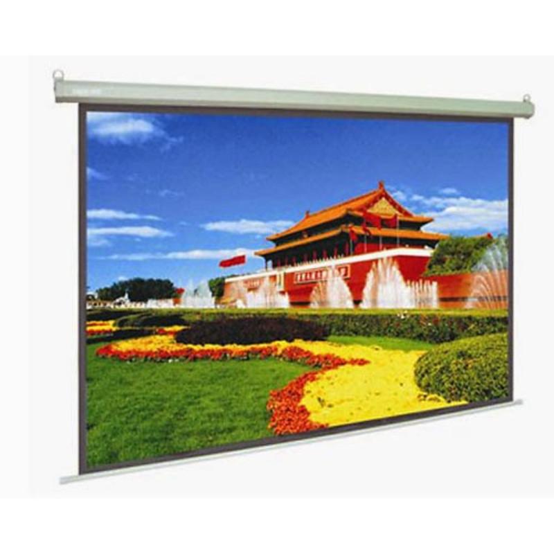 Màn chiếu treo tường Dalite 120x120 Inches - Hàng nhập khẩu