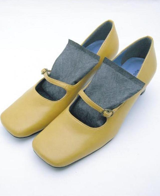 Gói Hút Ẩm Giày (2 Túi) - Nội Địa Nhật Bản