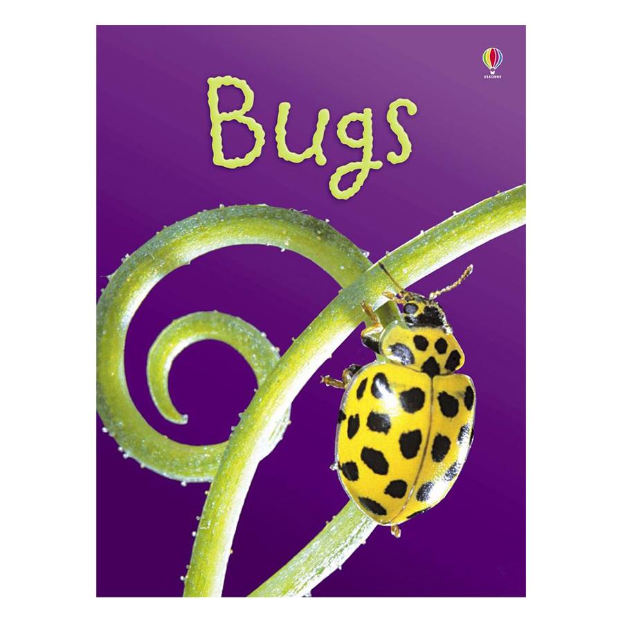 Usborne Bugs