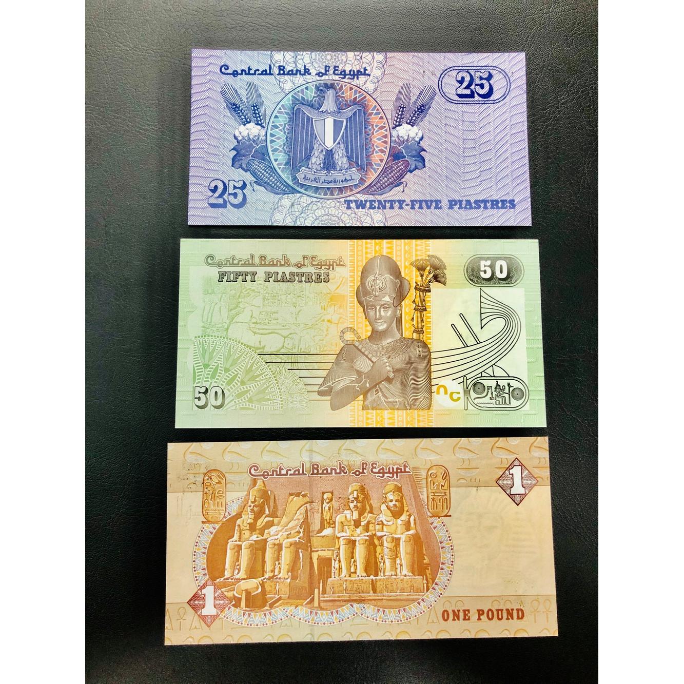 Combo 3 tờ tiền Ai Cập 25 50 Piastre 1 Pound đặc trung hình ảnh Ai Cập xưa sưu tầm