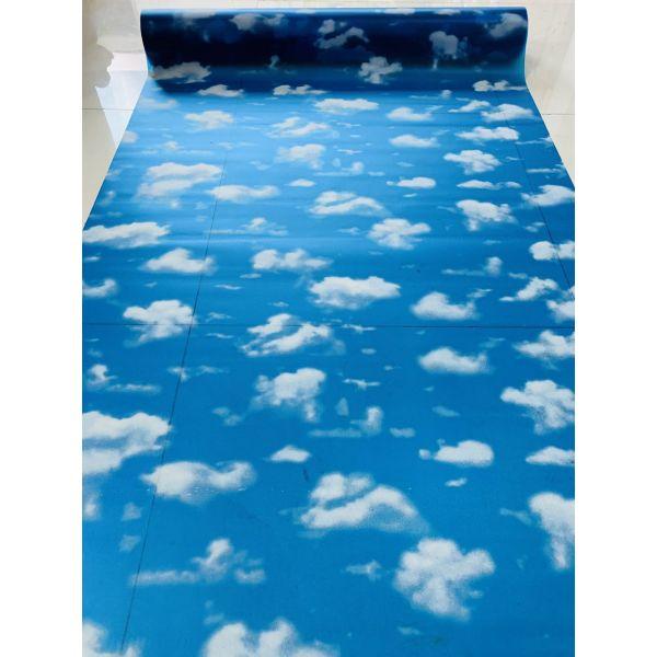 Decal dán kính mờ có sẵn keo bầu trời xanh  -  decal dán kính phòng khách - phòng ngủ - khách sạn - nhà hàng DK56