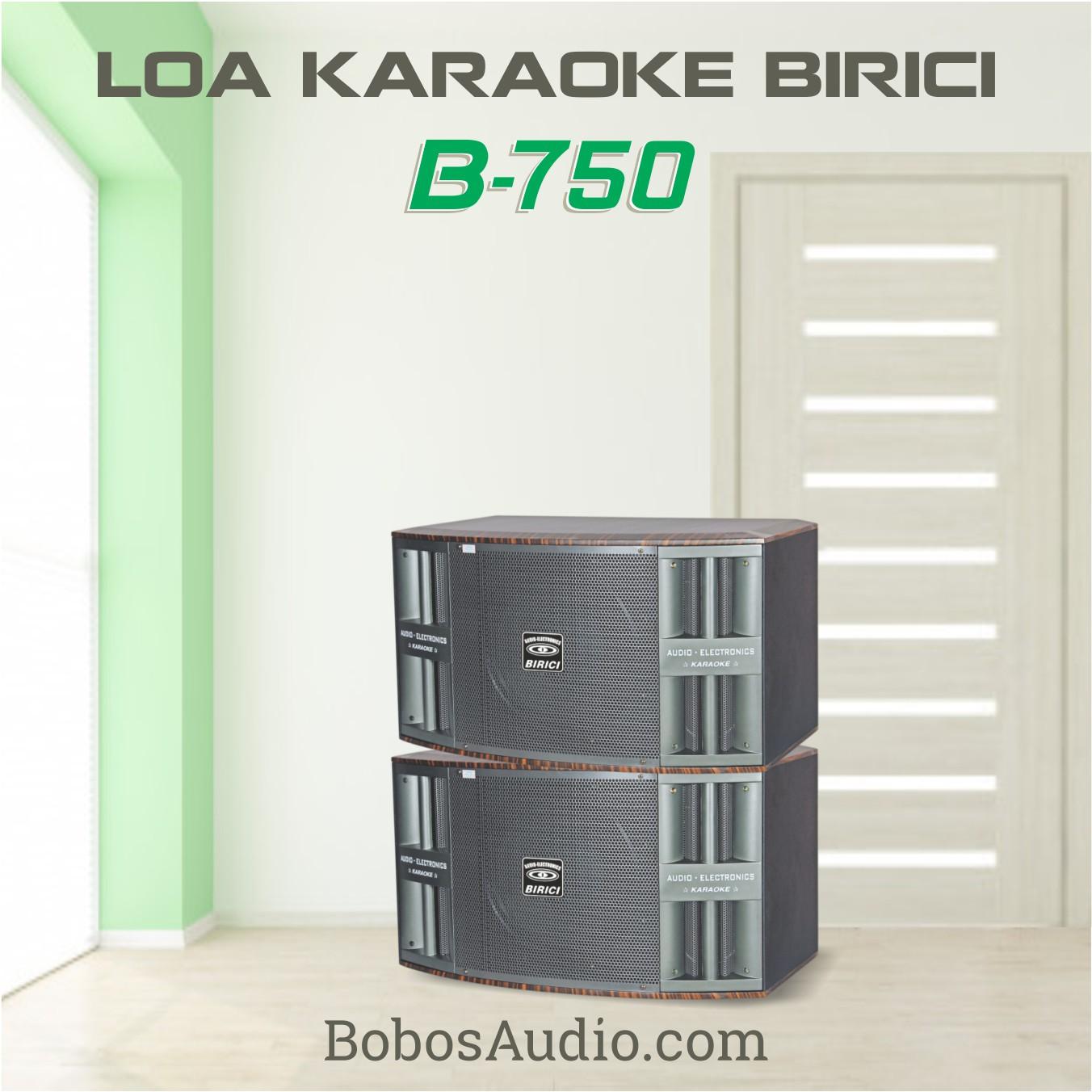 LOA KARAOKE BiRiCi B-750 (Hàng chính hãng)