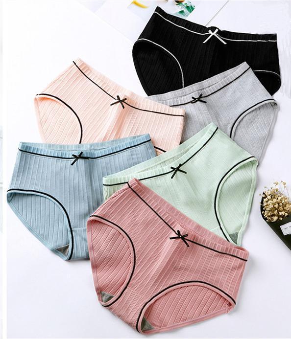 COMBO 5 quần lót cotton đính nơ cao cấp QL03