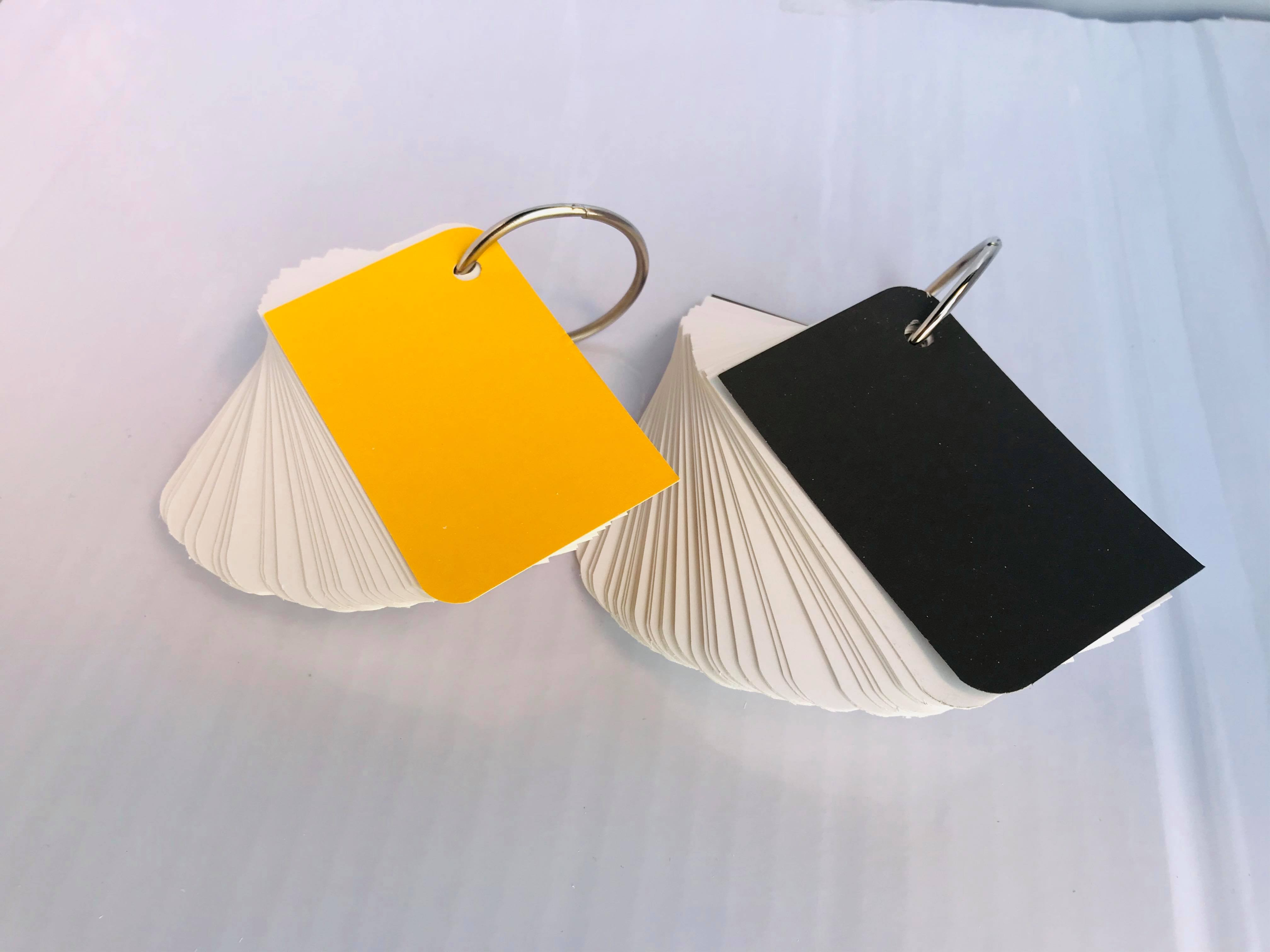 COMBO 2 tập flashcard trắng chiếc lá siêu dễ thương. Flashcard thẻ học từ vựng tiếng anh nhật hàn trung cao cấp   Bộ thẻ học tiếng nước ngoài (200 FLASHCARD TRẮNG ĐỤC BO GÓC) tặng kèm khoen