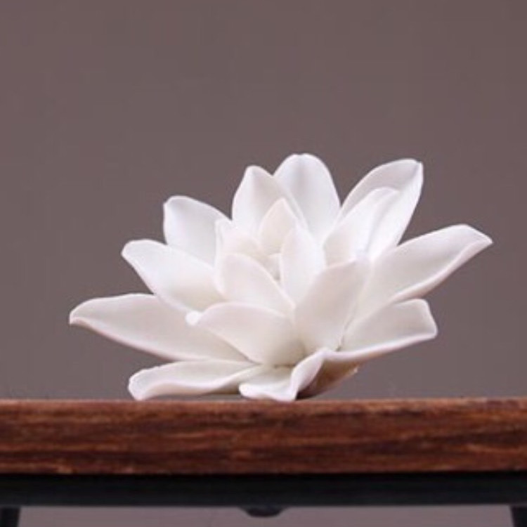 Hoa sen trắng cắm nhang