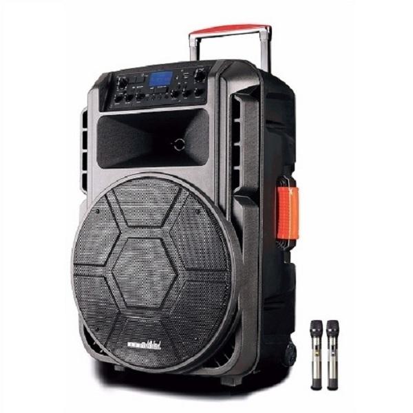 Loa kéo tay A/D/S-HC-T15F ( Bass 40) - Hàng chính hãng