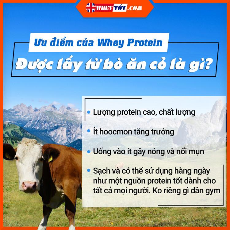 Sữa Tăng Cơ Critical Whey vị Dâu sữa 900G - 30 Lần Dùng