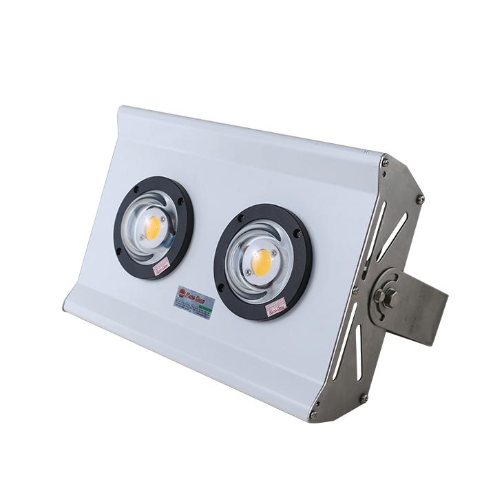 Đèn LED Chuyên dụng đánh cá chính hãng Rạng Đông Model: D B04L 150W điện áp 10-29VDC