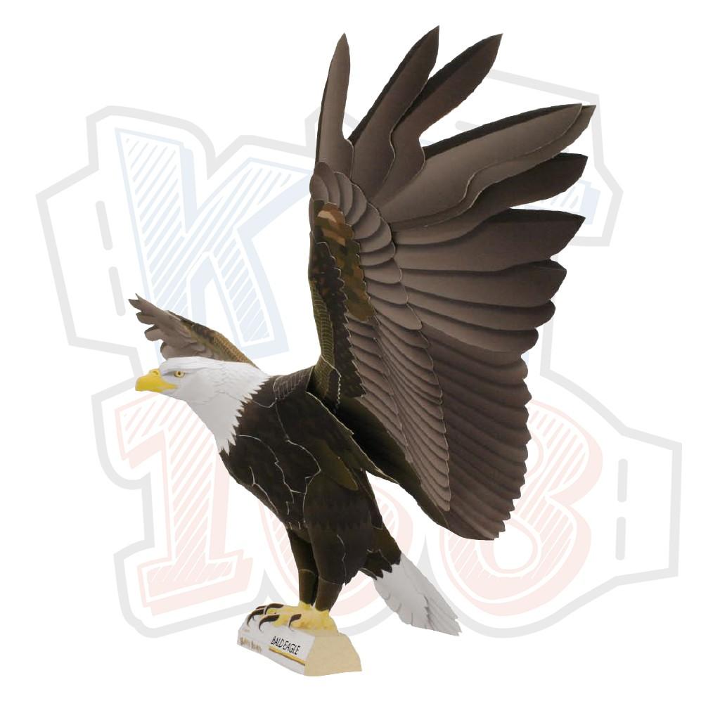 Mô hình giấy động vật chim đại bàng Bald Eagle