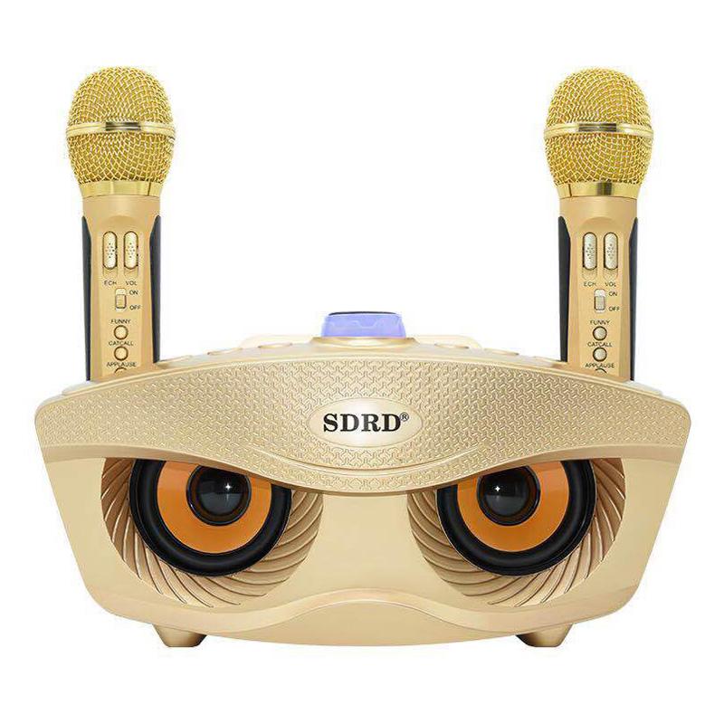 Mic Hát Karaoke 2 Loa Bluetooth SD-306 - Hàng Nhập Khẩu (Giao Màu Ngẫu Nhiên)