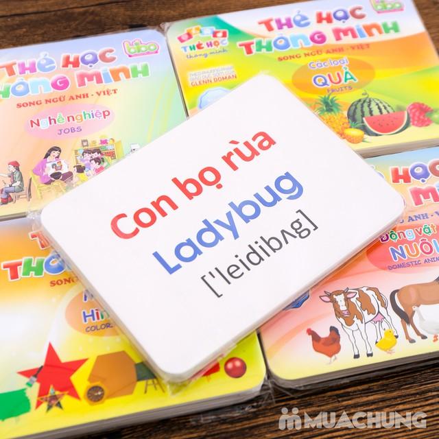 Bộ Thẻ Học Thông Minh Dạy Trẻ Về Thế Giới Xung Quanh 12 Chủ Đề 260 Thẻ Cho Bé