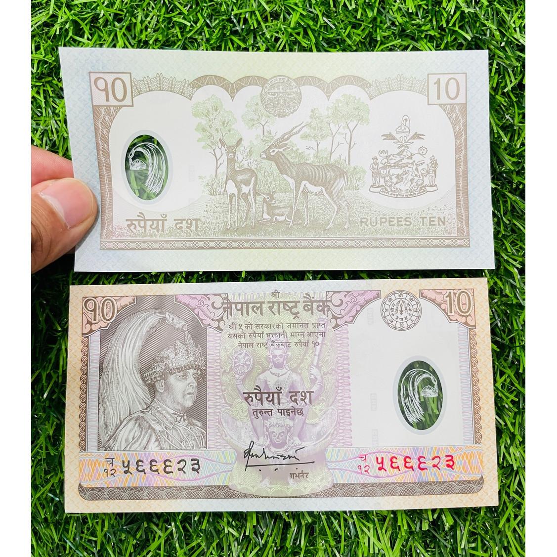Tiền Nepal 10 Rupees, bằng Polymer, mới 100% UNC, tặng túi nilon bảo quản