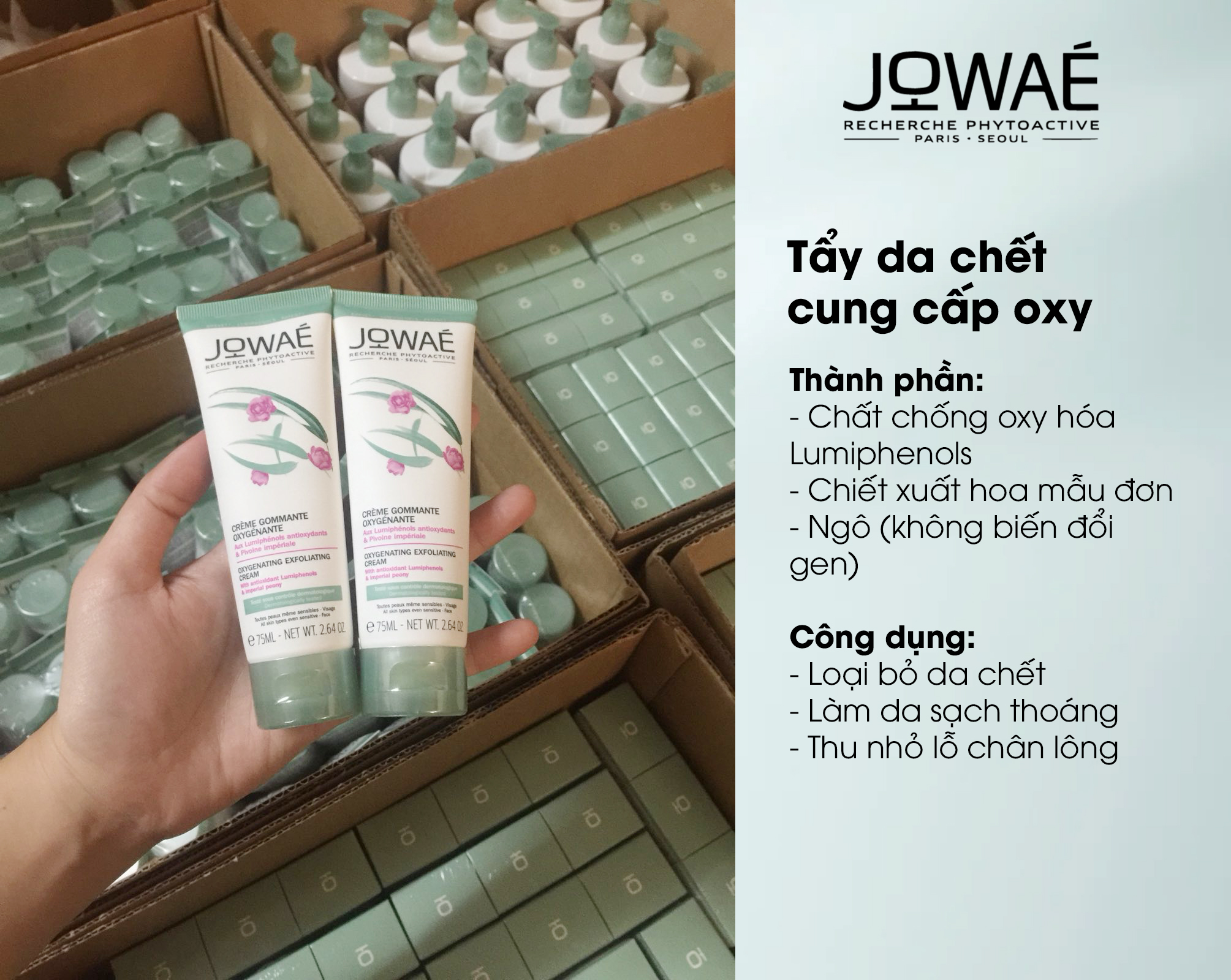Tẩy da chết cung cấp oxy JOWAE se khít lỗ chân lông Mỹ phẩm thiên nhiên nhập khẩu Pháp - OXYGENATING EXFOLIATING CREAM 75ml