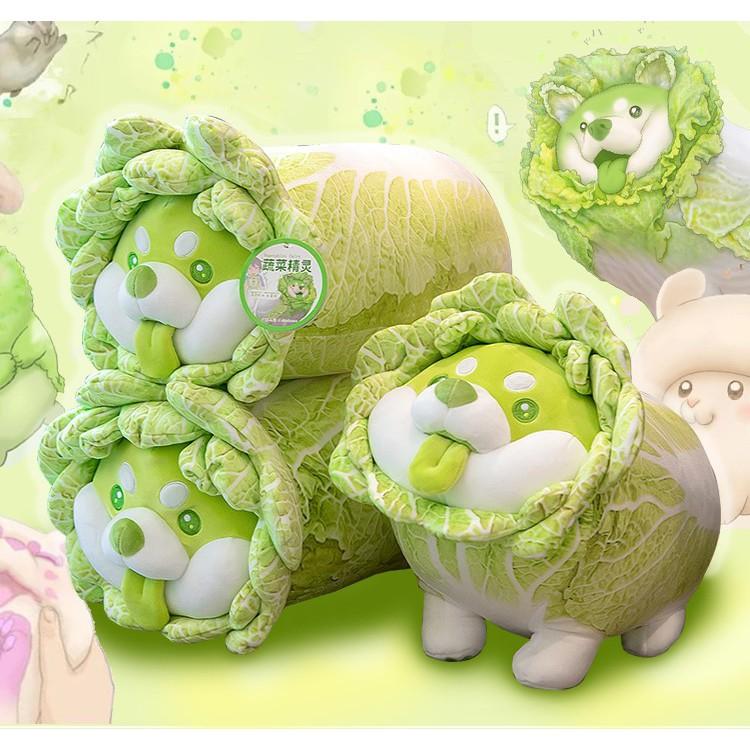 Gấu bông chó shiba bắp cải Vegetable Fairy siêu dễ thương kích thước 30-40-50-65cm