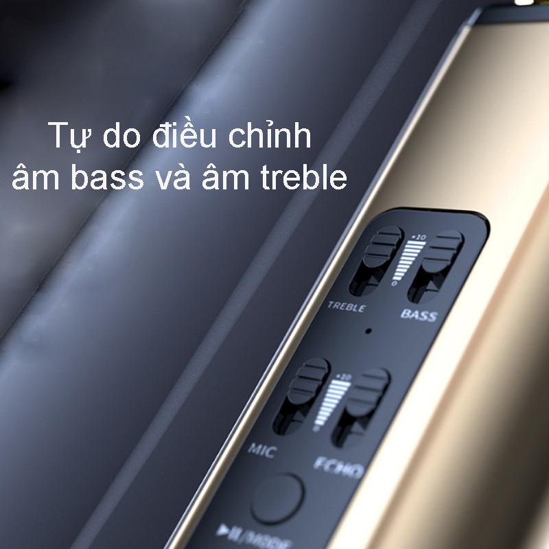 Micro Karaoke Không Dây Kiêm Loa Bluetooth PKCB - Hàng Chính Hãng
