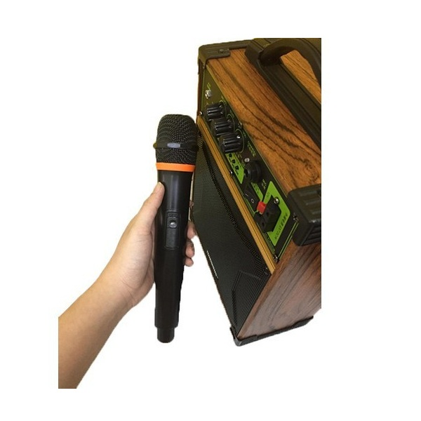 Loa trợ giảng, loa karaoke, loa kẹo kéo Temeisheng A6-42 - Hàng Chính Hãng
