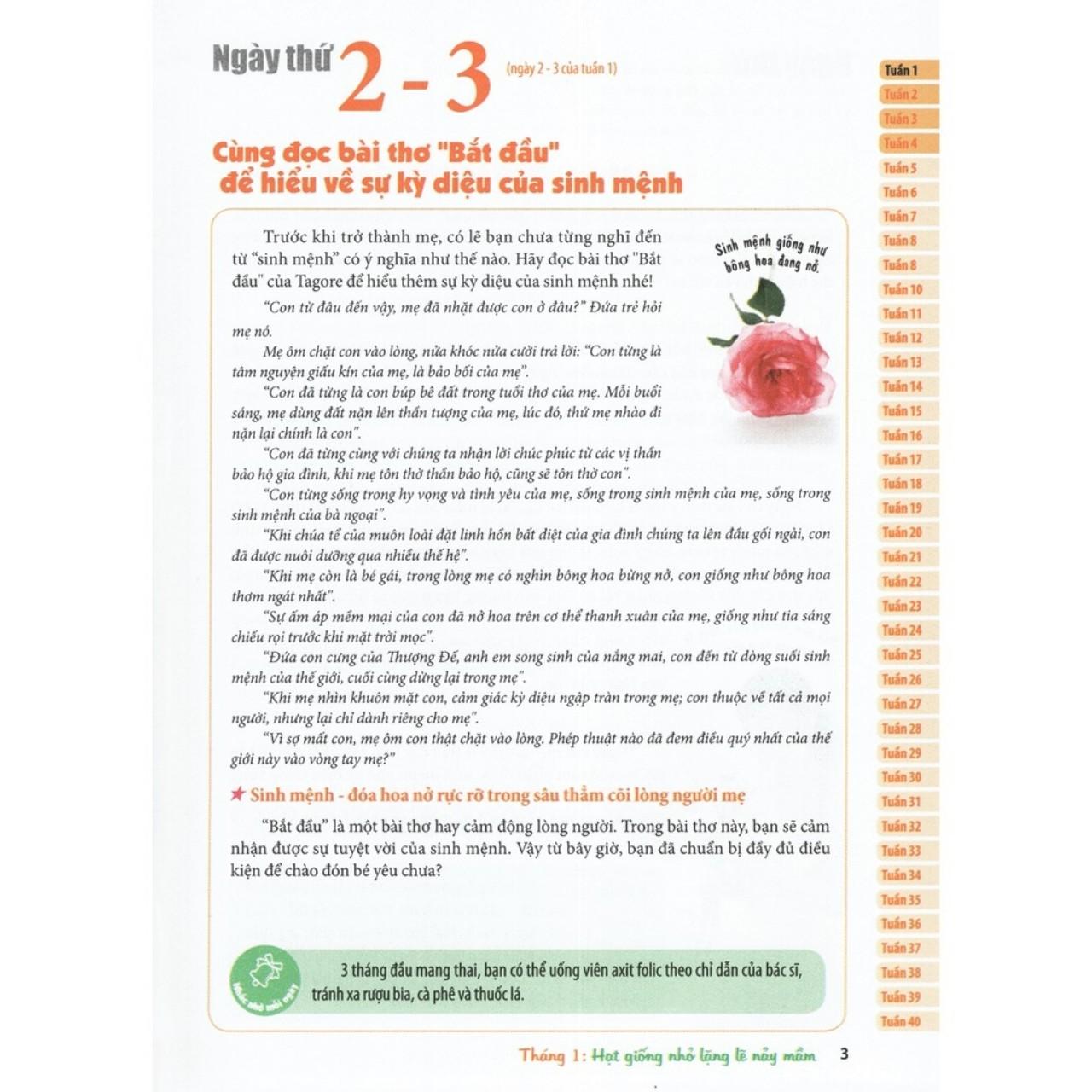 SÁCH - COMBO : THAI GIÁO THEO CHUYÊN GIA + BÁCH KHOA THAI NGHÉN + THỰC ĐƠN DINH DƯỠNG CHO TRẺ TỪ 0-3 TUỔI