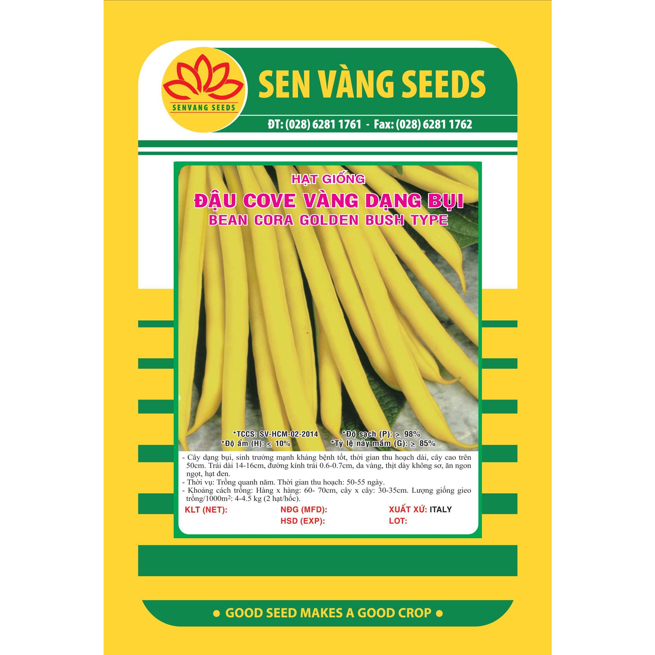 03 gói Hạt giống đậu cove vàng dạng bụi Italy VTS67