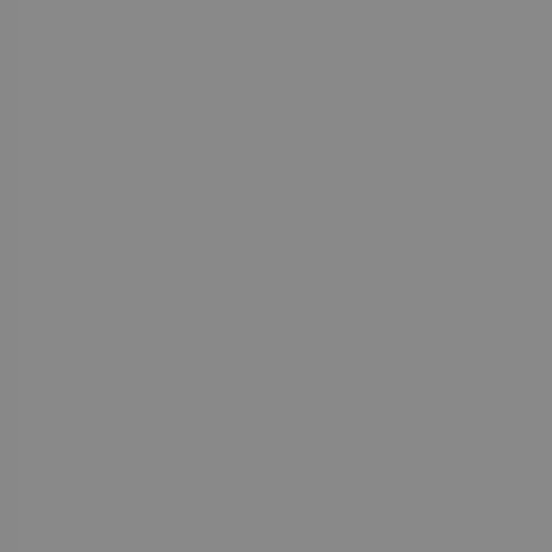 Phông giấy mỹ chụp ảnh studio màu xám mã: 21