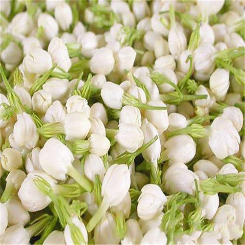 Tinh Dầu Thiên Nhiên Hương Hoa Lài Nomad Essential Oils Jasmine 30ml